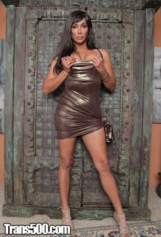 Muscle gay Difference between transsexual and transgender