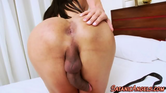 Free shemale movies solo