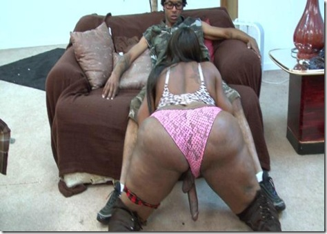 Thick busty phat black trannies