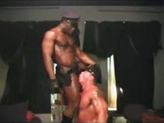 Donte recommends Transsexual lingerie