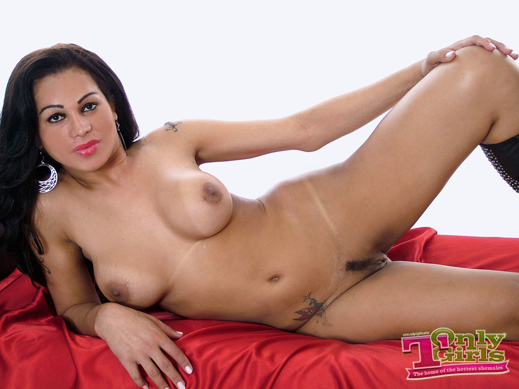 Quality porn Free transsexual pictures