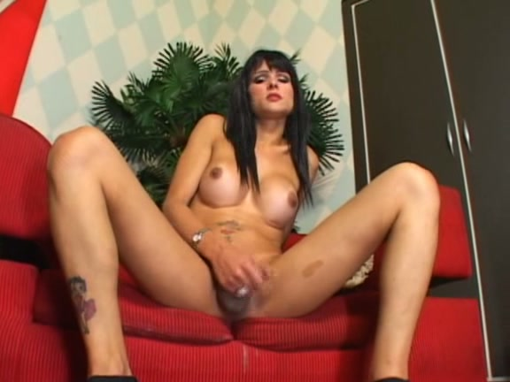 cocks Transsexual dvd beef 2